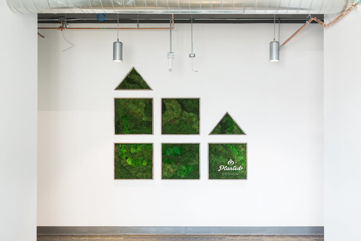 PlantedDesign_MossWall_WLButler_RedwoodCity_California_Offices_6384.jpg