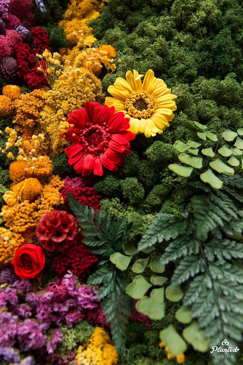 PlantedDesign_MossWall_Residential_Preserved_Flowers_5256.jpg