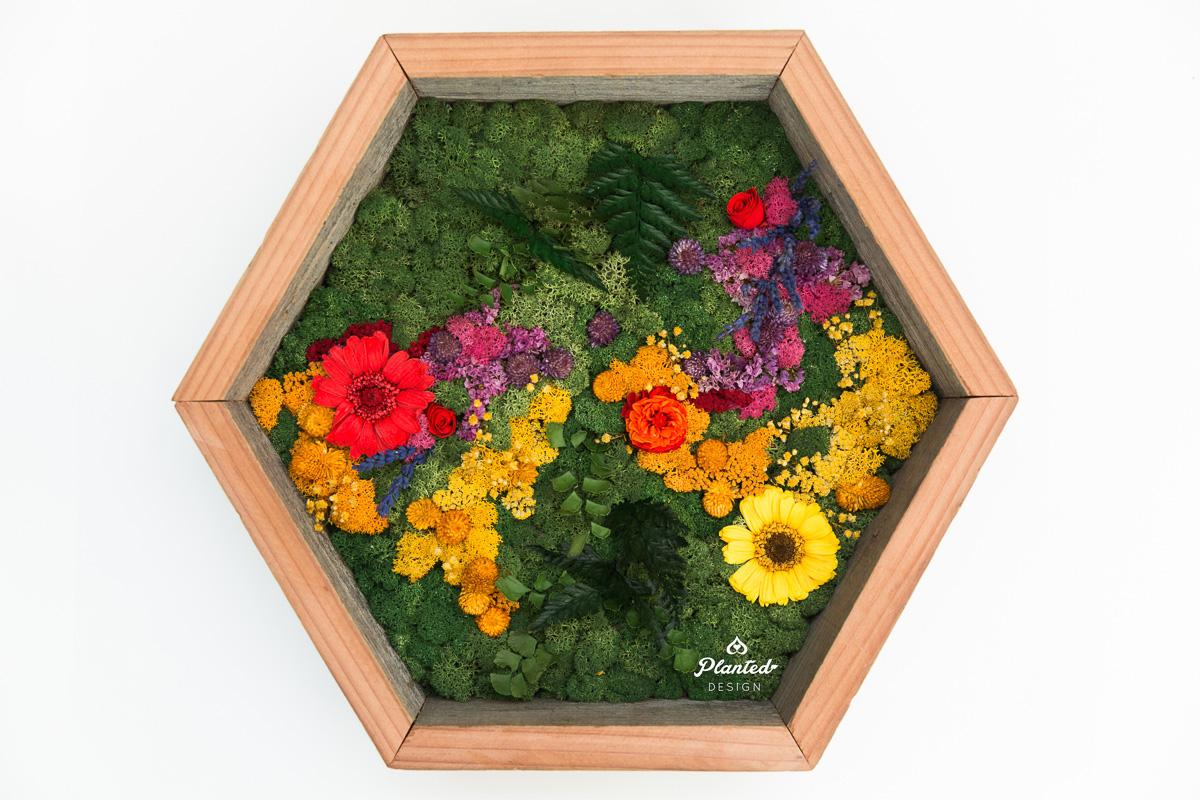PlantedDesign_MossWall_Residential_Preserved_Flowers_5271.jpg