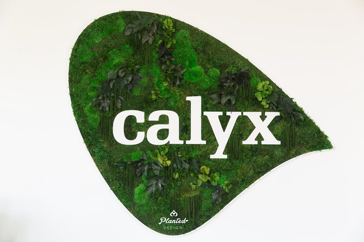 PlantedDesign_MossWall_Calyx_Reception_Alameda_California_6436.jpg