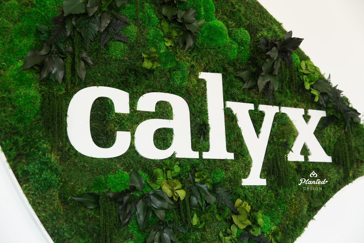 PlantedDesign_MossWall_Calyx_Reception_Alameda_California_6448.jpg