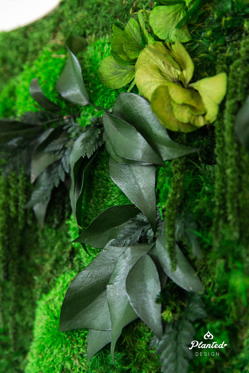 PlantedDesign_MossWall_Calyx_Reception_Alameda_California_6495.jpg