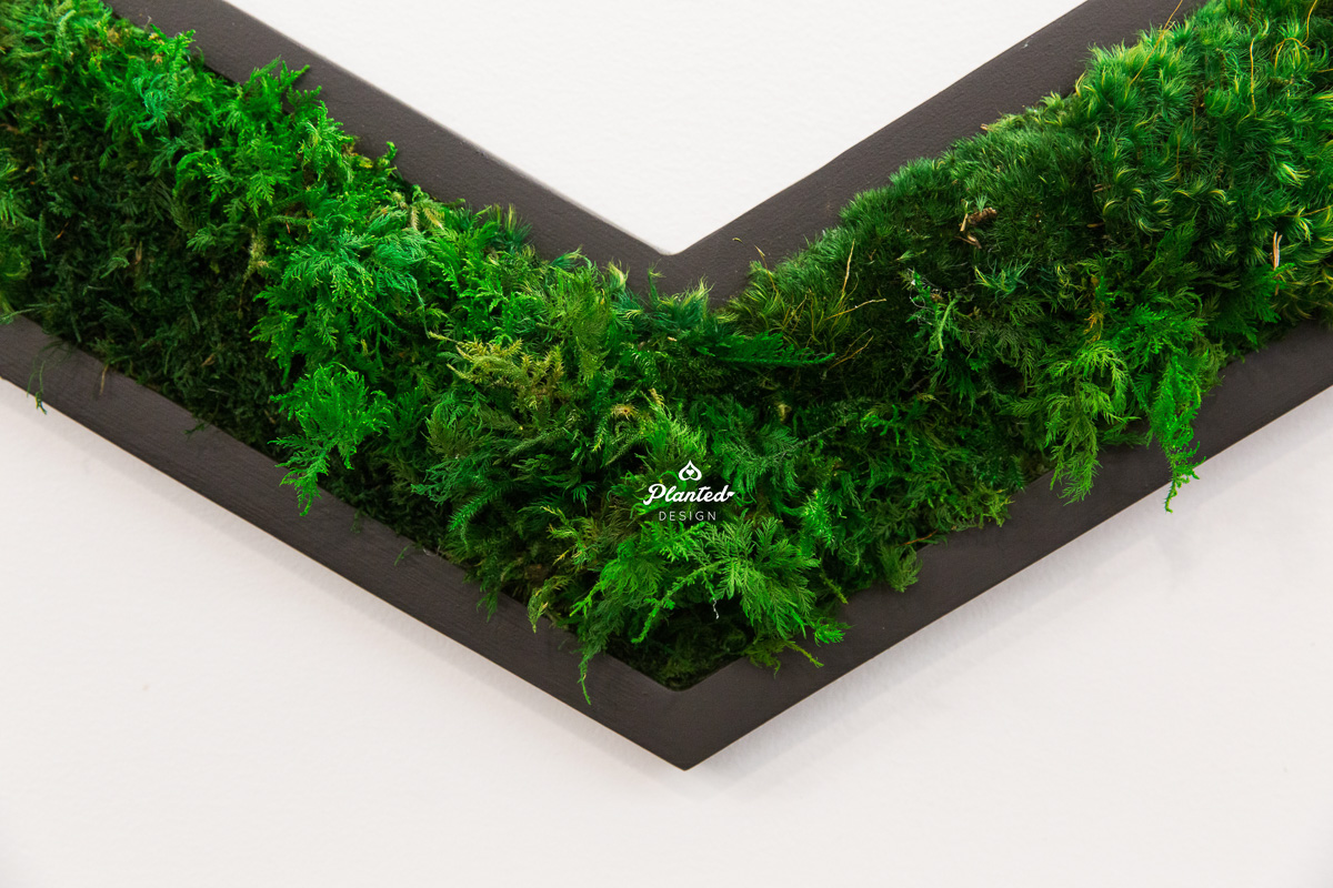 PlantedDesign_MossWall_Heap_SanFrancisco_California_8133.jpg