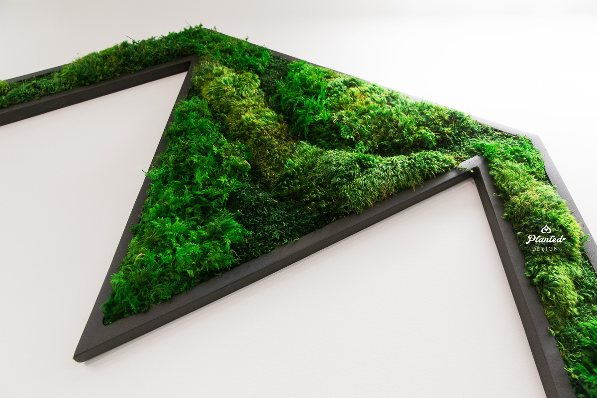 PlantedDesign_MossWall_Heap_SanFrancisco_California_8130.jpg