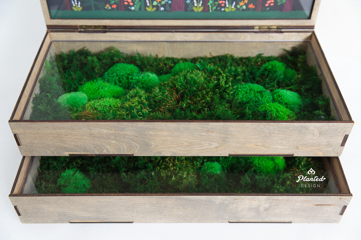 PlantedDesign_DisplayBox_HumboldtFarms_California_8666.jpg
