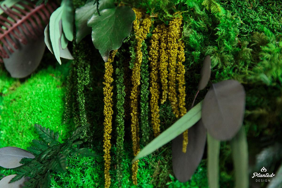 PlantedDesign_Dai_Ichi_Life_Innovation_Lab_MossWall_Sunnyvale_California_Office_8583.jpg