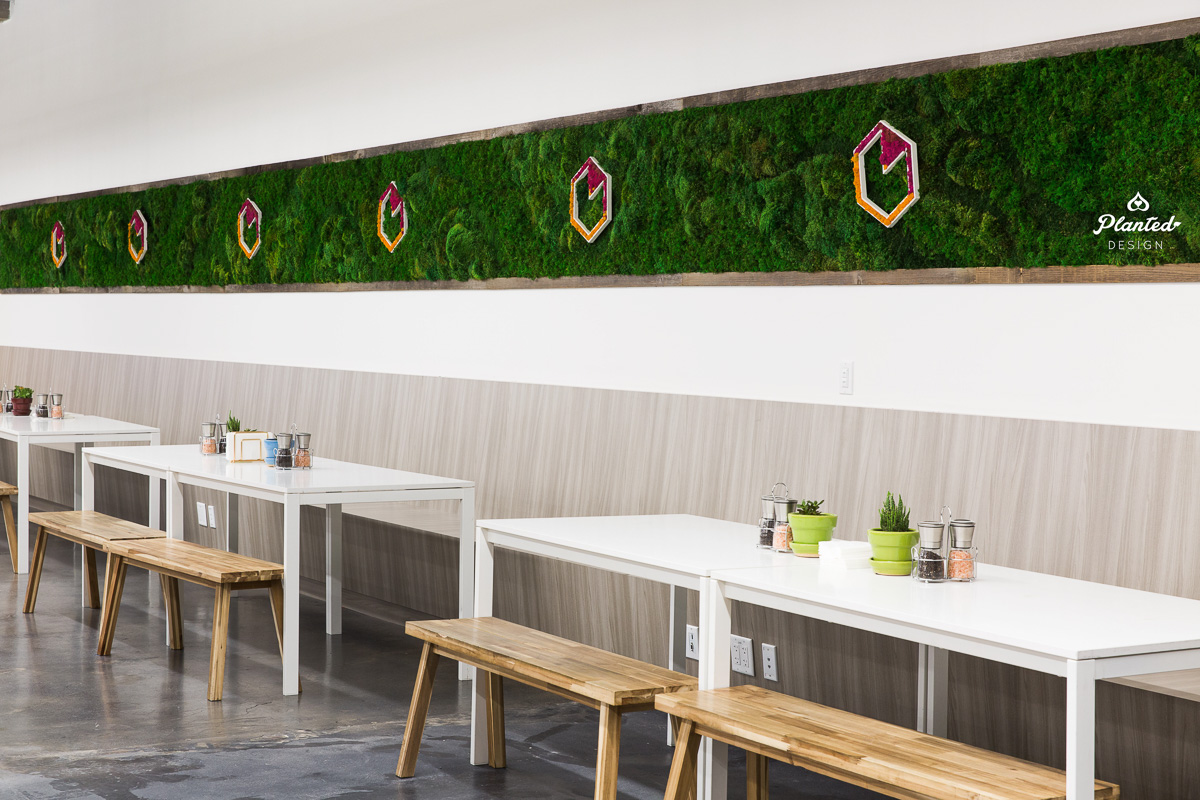 Heap Lunch Room  — Moss Wall
