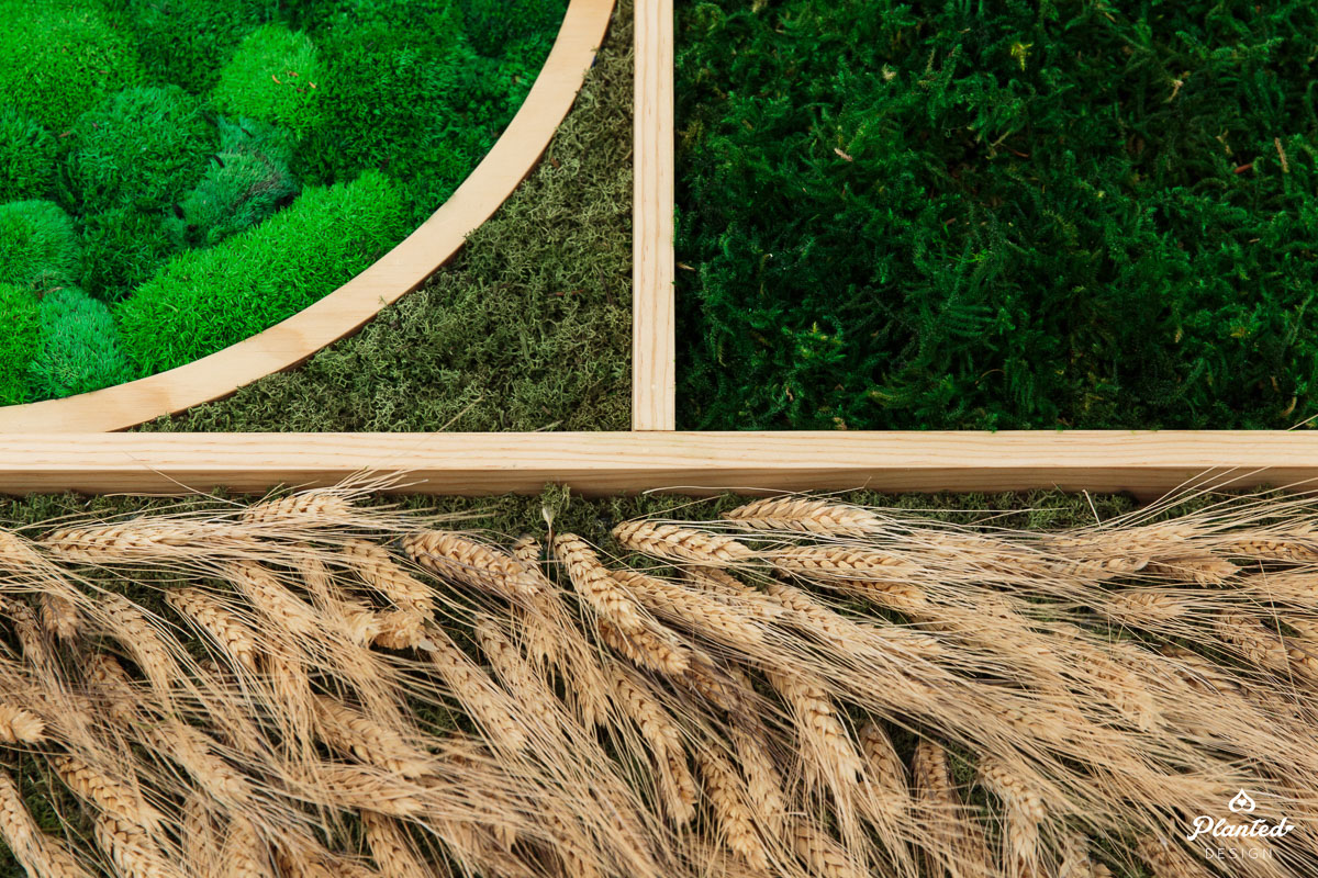 PlantedDesign_MossWall_Blue_River_Technologies_Sunnyvale_California_Reception_Wheat_Cotton_9006.jpg