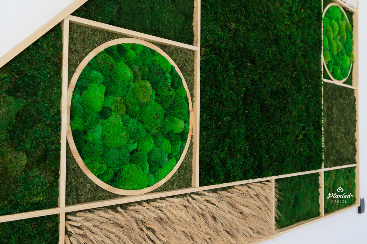 PlantedDesign_MossWall_Blue_River_Technologies_Sunnyvale_California_Reception_Wheat_Cotton_8986.jpg