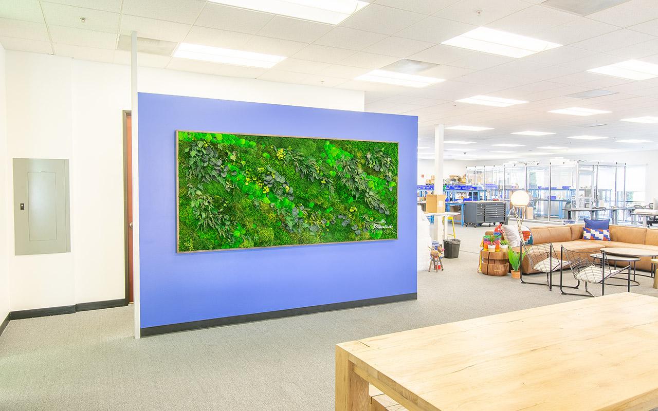 PlantedDesign_Swarm_Living_Moss_Walls_Reception_Lobby_Santa_Clara_California_03.jpg