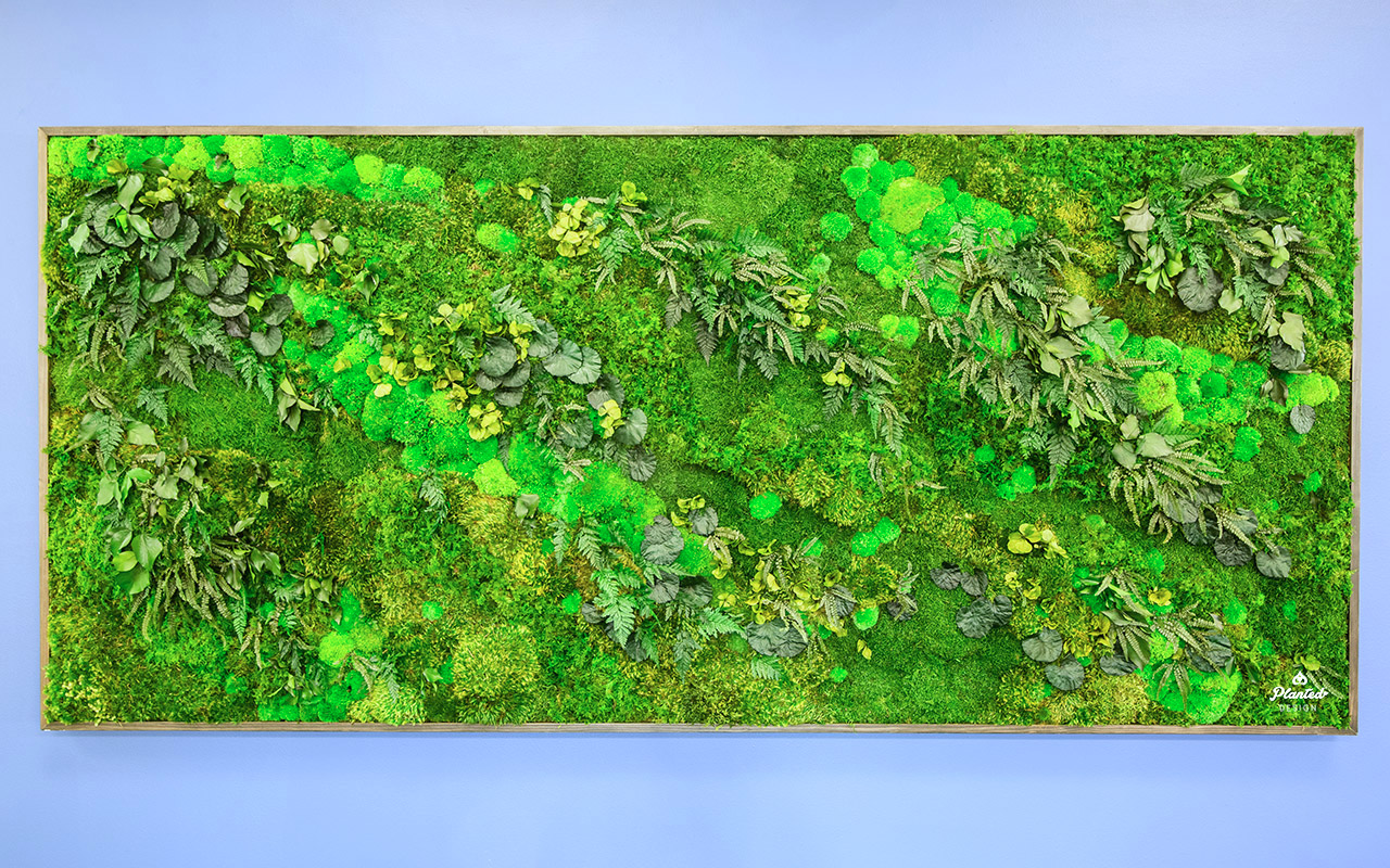 PlantedDesign_Swarm_Living_Moss_Walls_Reception_Lobby_Santa_Clara_California_01.jpg