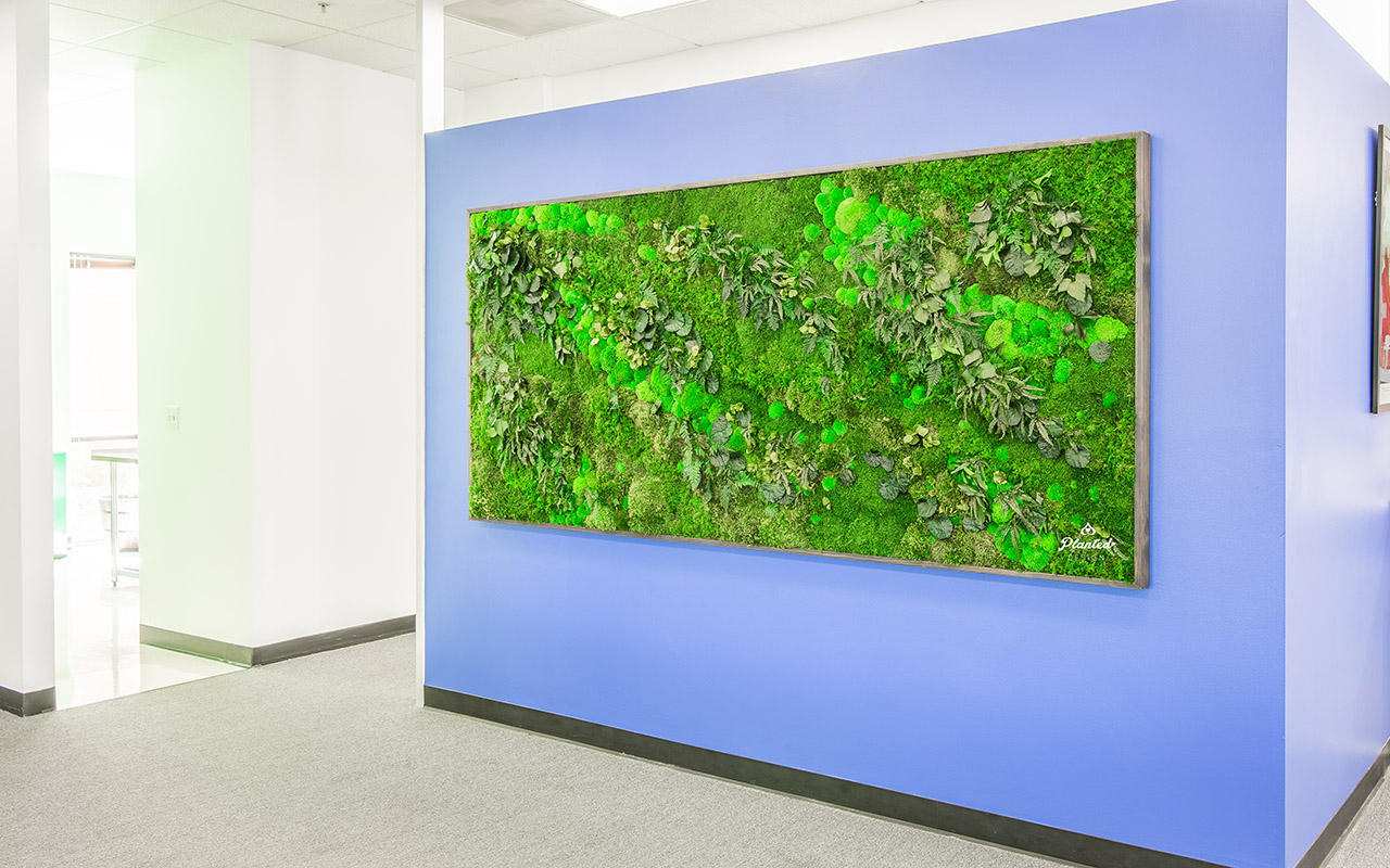 Swarm  — Moss Wall