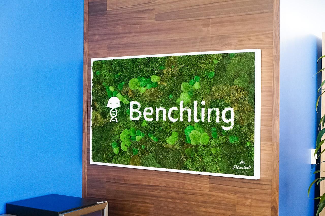Planted Design Moss Living Signage Logo Reception Desk 4.jpg