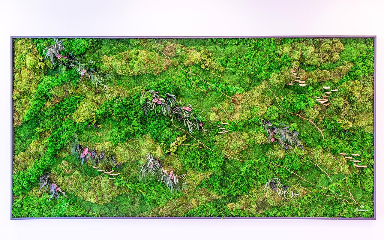 PlantedDesign_Hitachi_Living_Moss_Mushrooms_Plants_Walls_Reception_Lobby_Santa_Clara_California_05.jpg