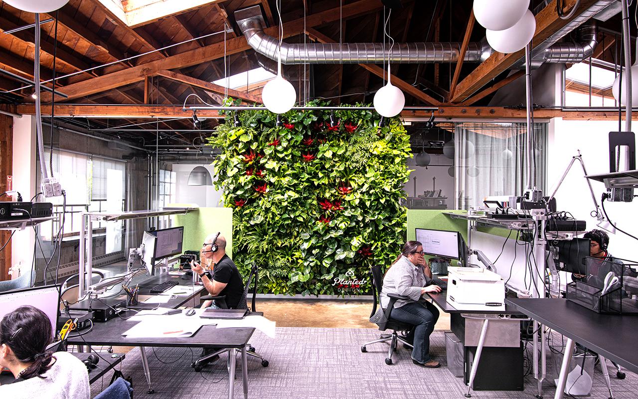 PlantedDesign_LivingWall_MarStructural_Berkeley00004.jpg