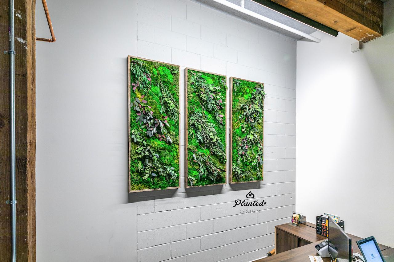 PlantedDesign_Moss Wall_Triptych Design_MaintenanceFree_MasterClass_SanFrancisco00002 copy.jpg