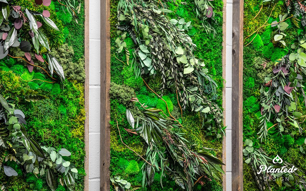 PlantedDesign_Moss Wall_Triptych Design_MaintenanceFree_MasterClass_SanFrancisco00003.jpg