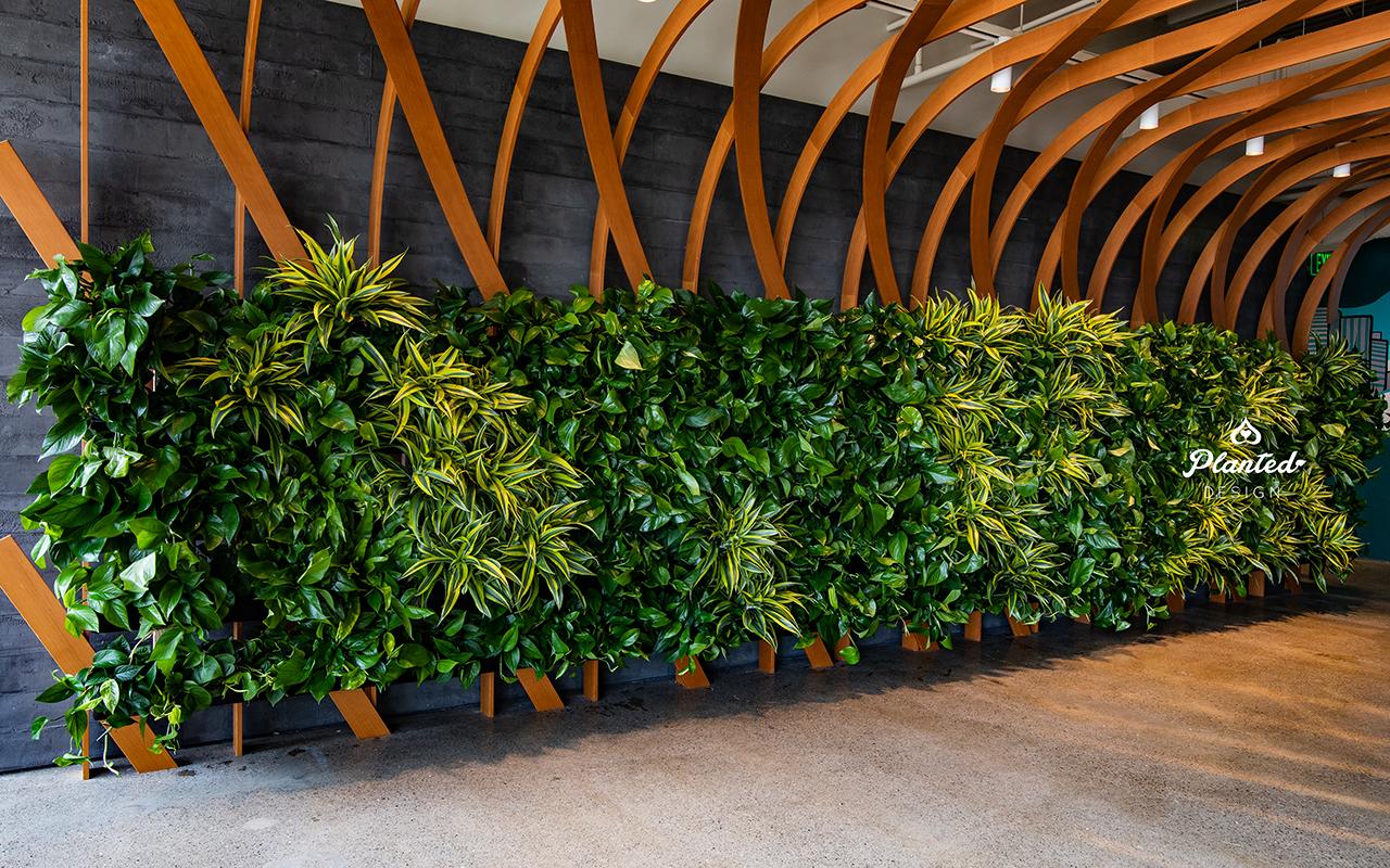 PlantedDesign_Living Wall_VerticalGarden_Synapsefi_SanFrancisco_California00081.jpg