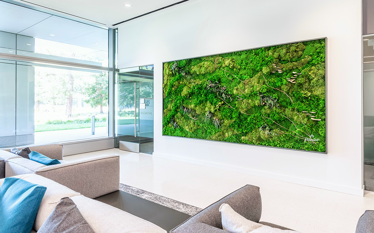 PlantedDesign_Hitachi_Living_Moss_Mushrooms_Plants_Walls_Reception_Lobby_Santa_Clara_California_02.jpg