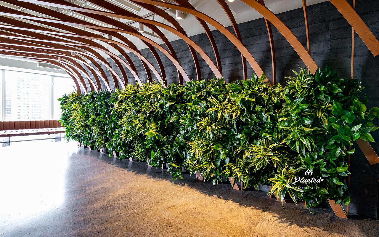 PlantedDesign_Living Wall_VerticalGarden_Synapsefi_SanFrancisco_California00084 copy.jpg