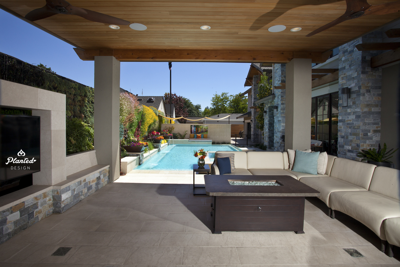 Planted Design_Residential Living Wall_Poolside 1