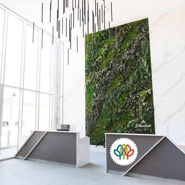 Hotel Trio moss wall, Healdsburg