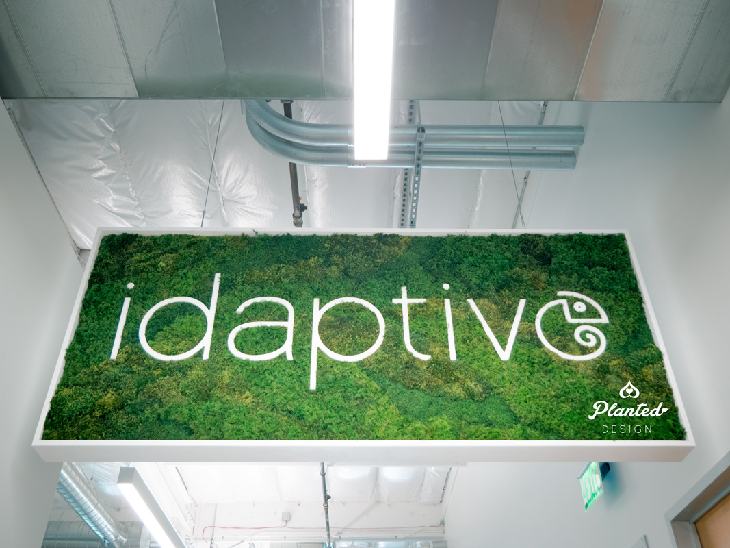 PlantedDesign_MossWall_Idaptive_SantaClara_California_Office-W3.jpg