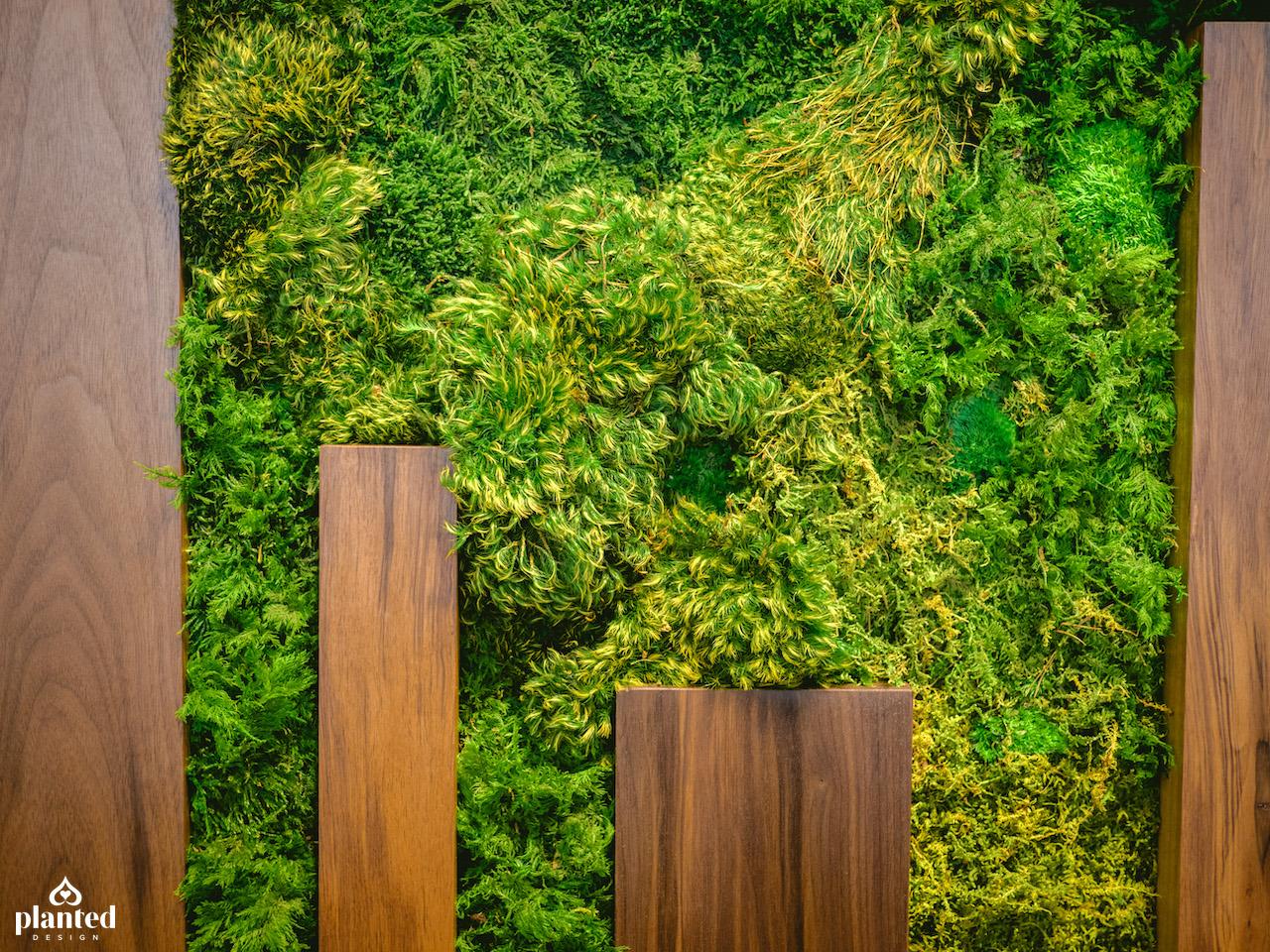 PlantedDesign_MossWall_PerfectDayFoods_Emeryville_California_Office-12_fixed.jpg