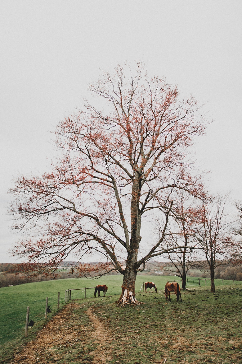 CountryRusticEngagement_Mallory+Justin-40.jpg