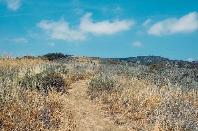 MemorialDay_Malibu_California-35.jpg