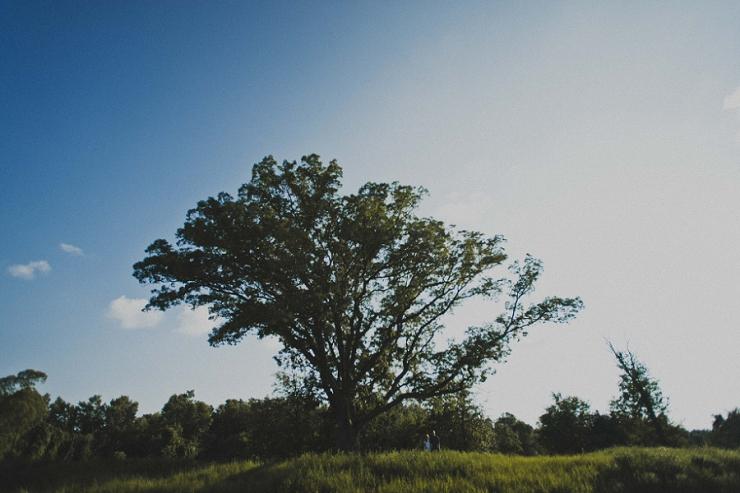 Trail-Woods-Engagement-Adventure_Corinne+Justin-5.jpg