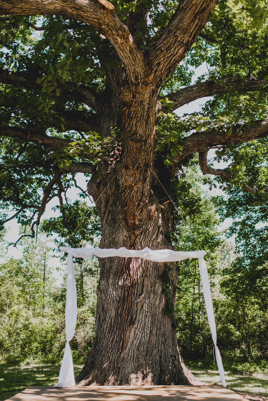 Intimate-Backyard-Farmhouse-Ohio-Wedding-Andi+Ben_Mallory+Justin-Photographers-4.JPG