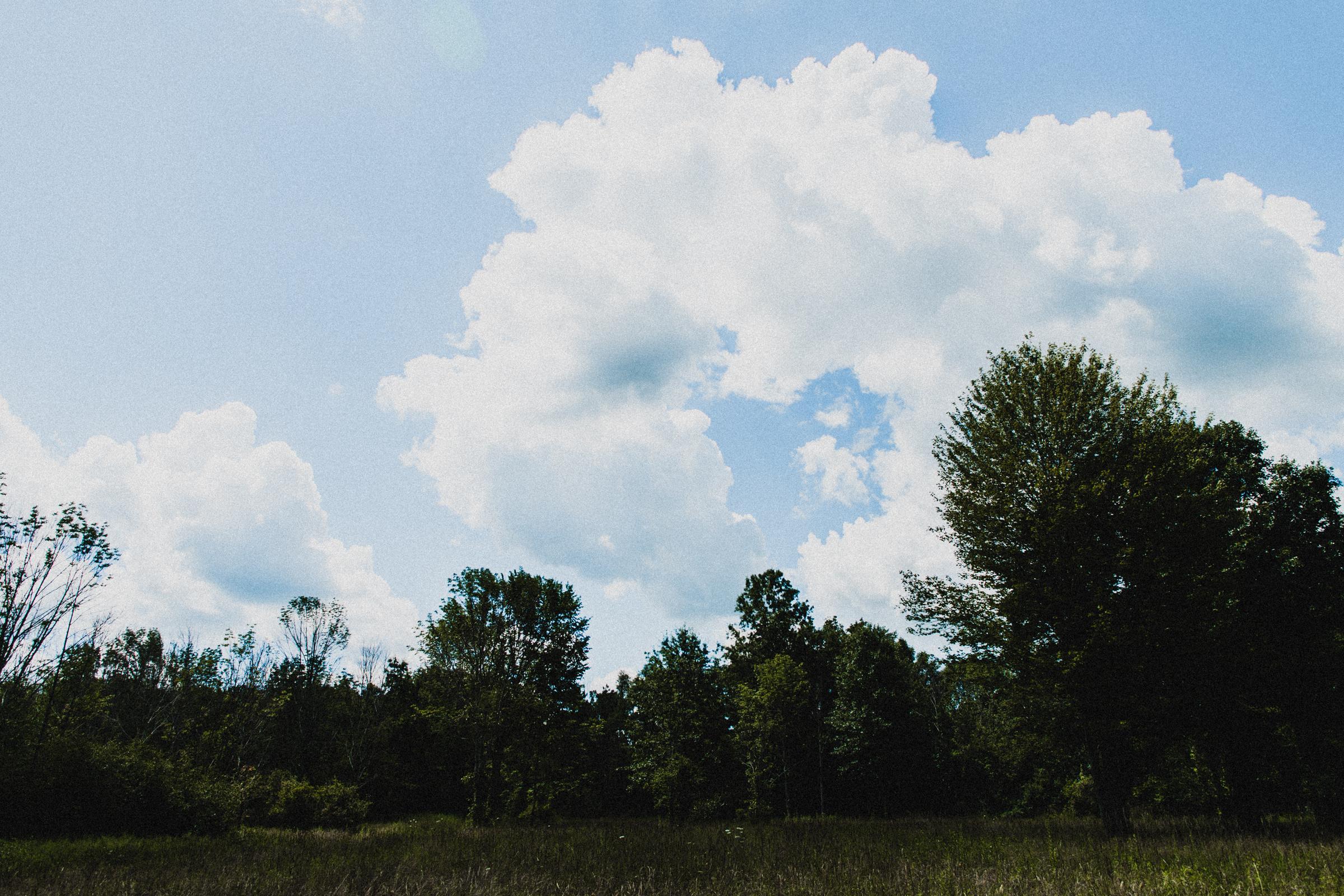 Intimate-Backyard-Farmhouse-Ohio-Wedding-Andi+Ben_Mallory+Justin-Photographers-31.JPG