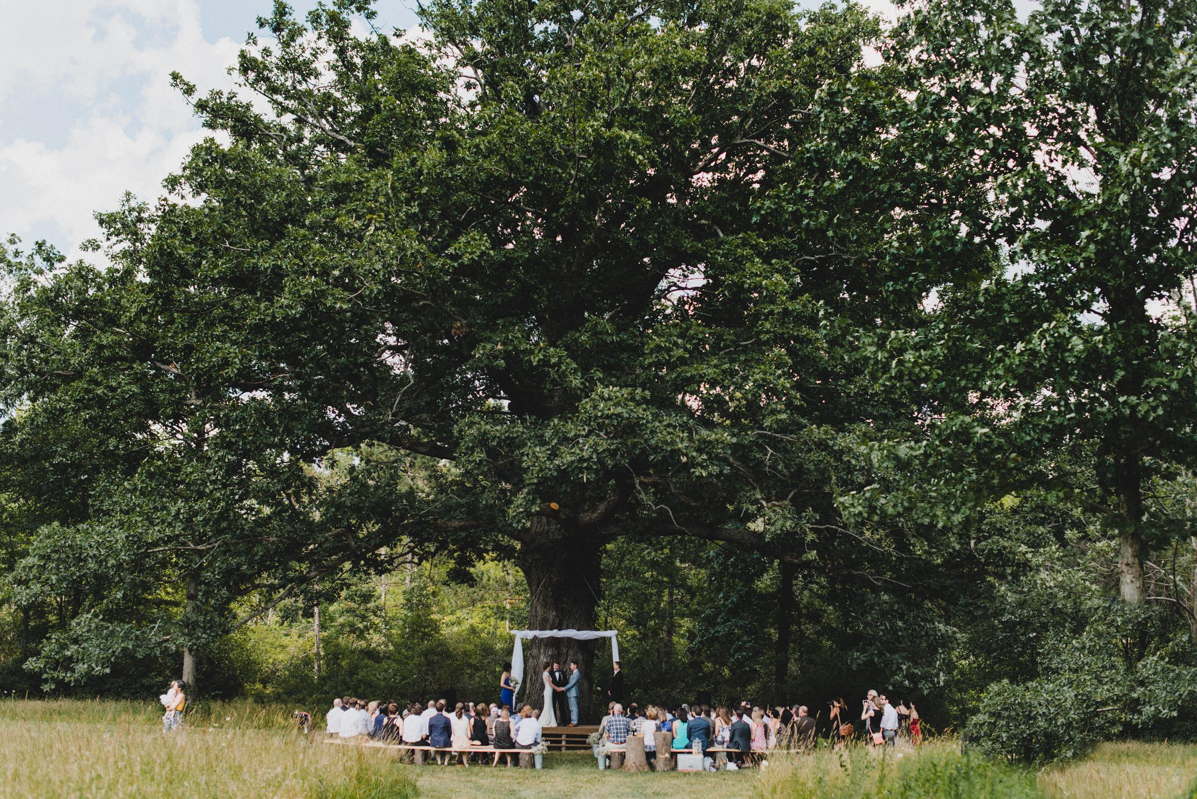 Intimate-Backyard-Farmhouse-Ohio-Wedding-Andi+Ben_Mallory+Justin-Photographers-155.JPG