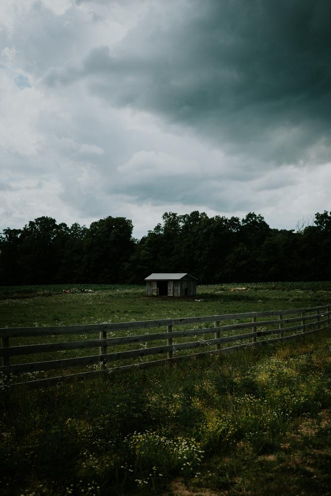 Peacock-Ridge-Farm-Wedding-MalloryandJustin-Photographers-34.jpg