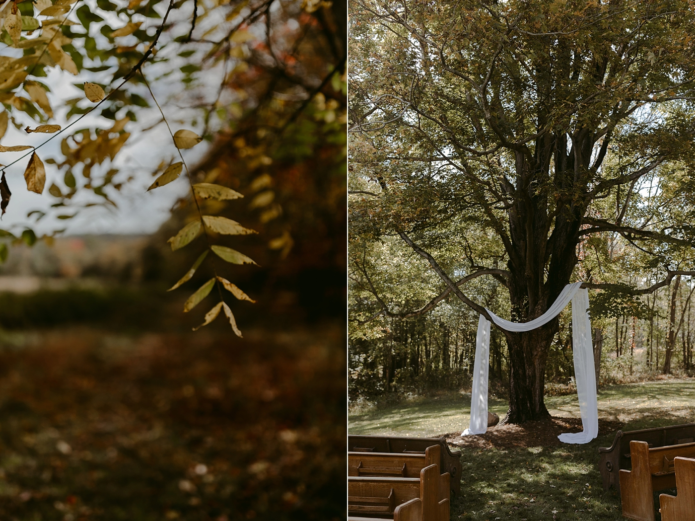 October-Backyard-Wedding_Rachel+Brian_MJPHOTO-3.jpg