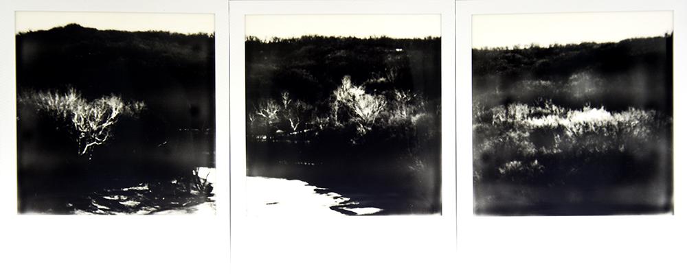 Landscape Triptych Web.jpg