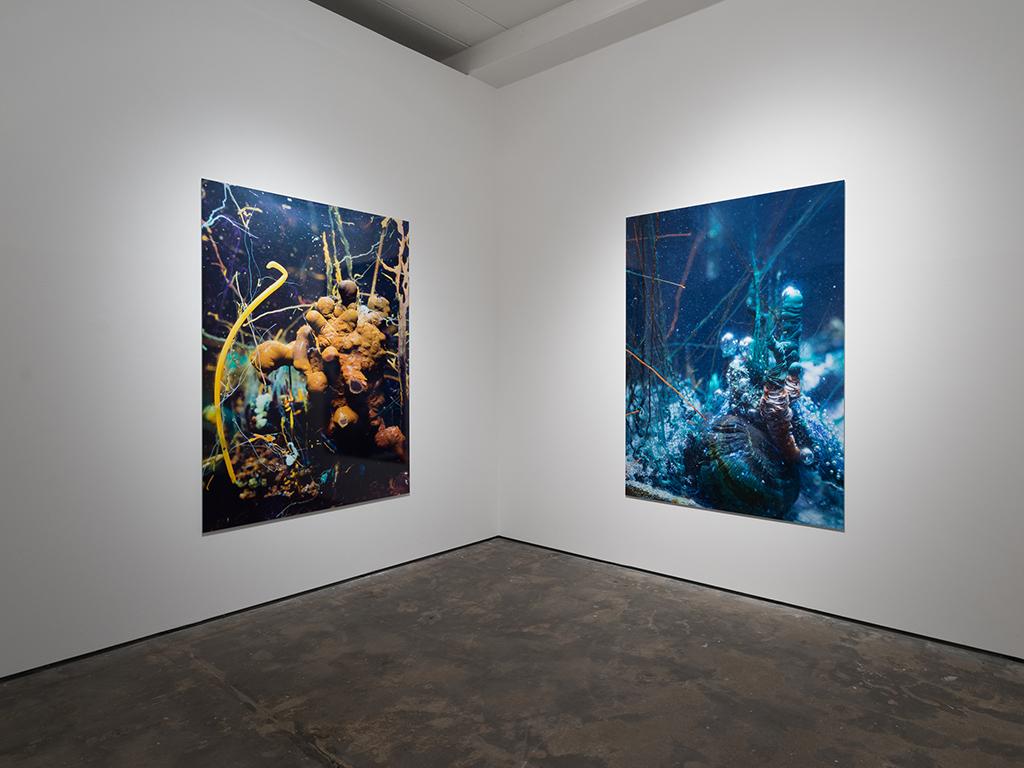 Installation view: ' Caverne ' exhibition at WENTRUP, Berlin
