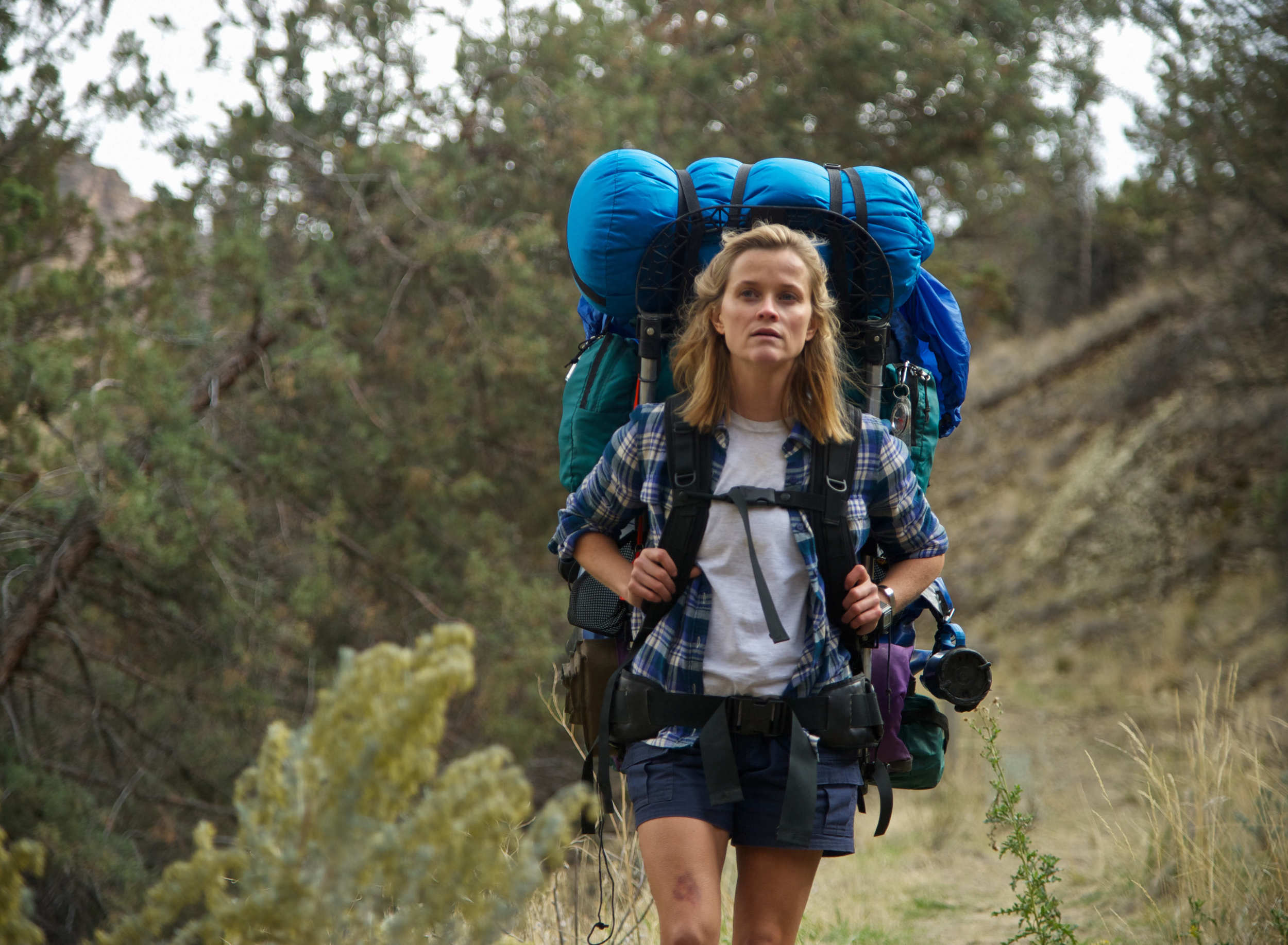 Still shot from ' Wild ', starring Reese Witherspoon, 2014