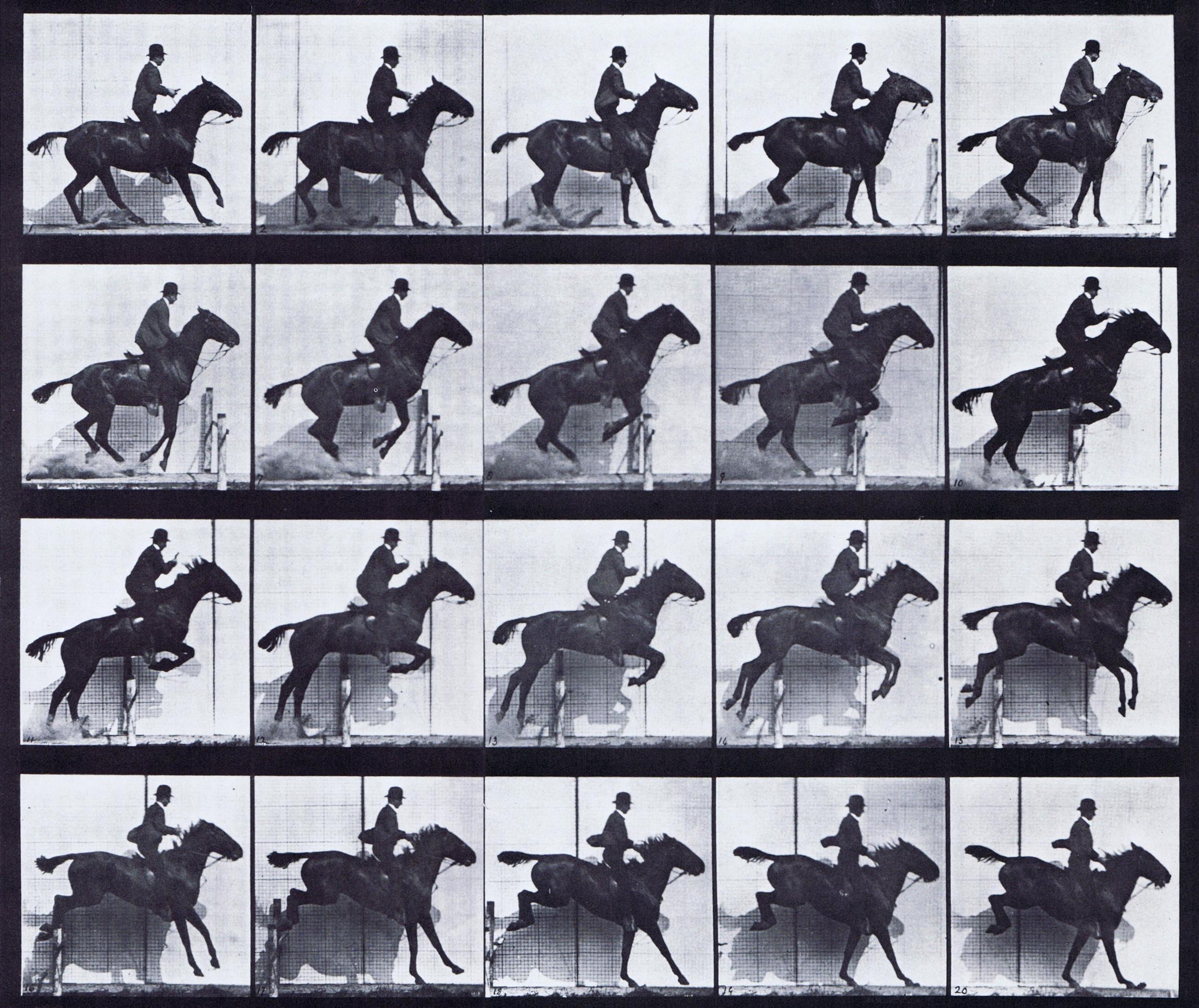 ' Horse in Motion ', 1878 by Cadweard Muybridge
