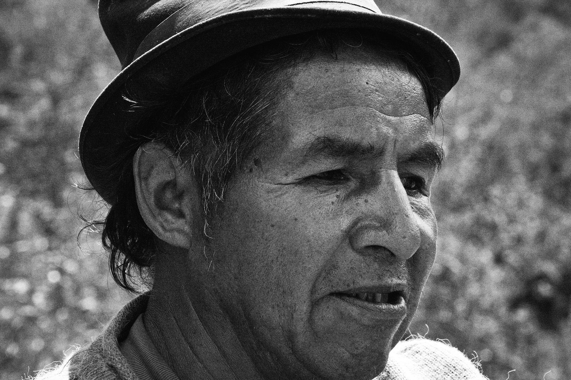 Julio Almendra, 2014.