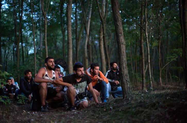 Refugees wait in a forest near Röszke to get pass the police from Serbia to Hungary. Photo by Dan Kitwood/Getty Images.