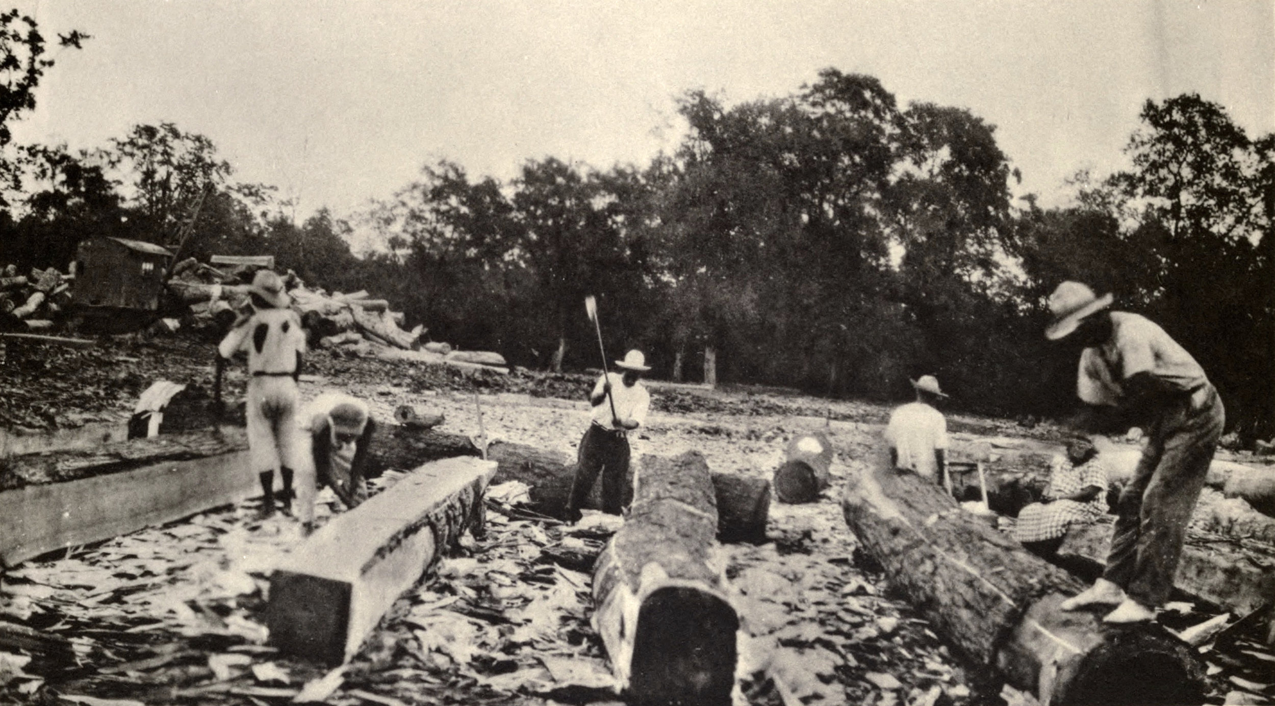 Squaring mahogany logs for export in Belize, 1936. Photo by The forests and flora of British Honduras