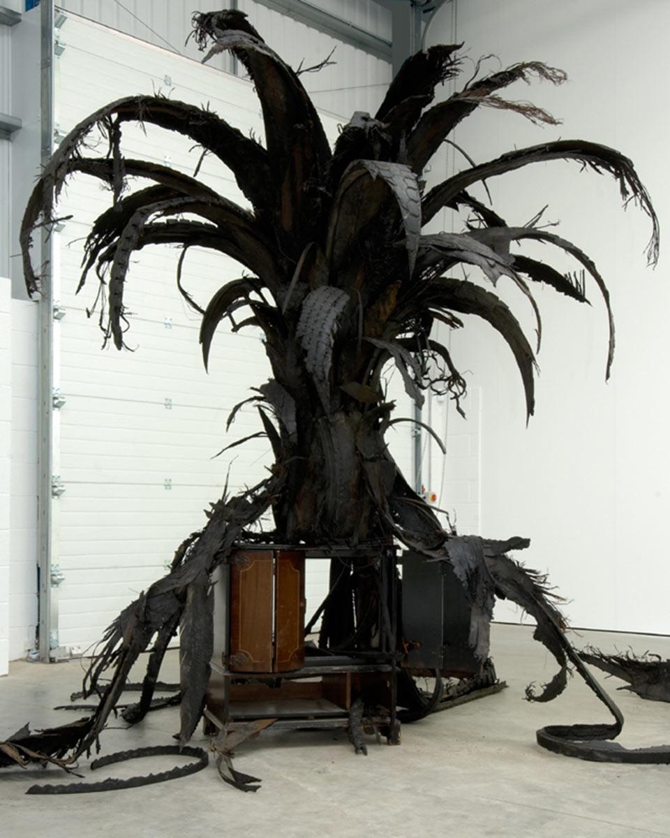 Black Palm VI , 2011 by Douglas White