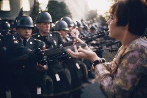 BEAR WITNESS TO THE PINK REVOLUTION: SUBCULTURES TODAY