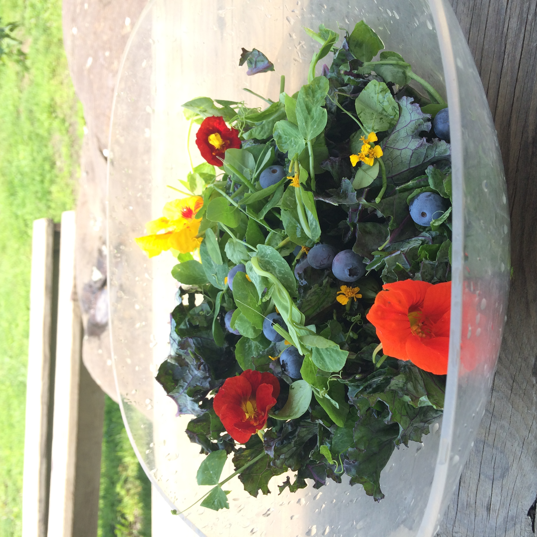 flower salad.JPG