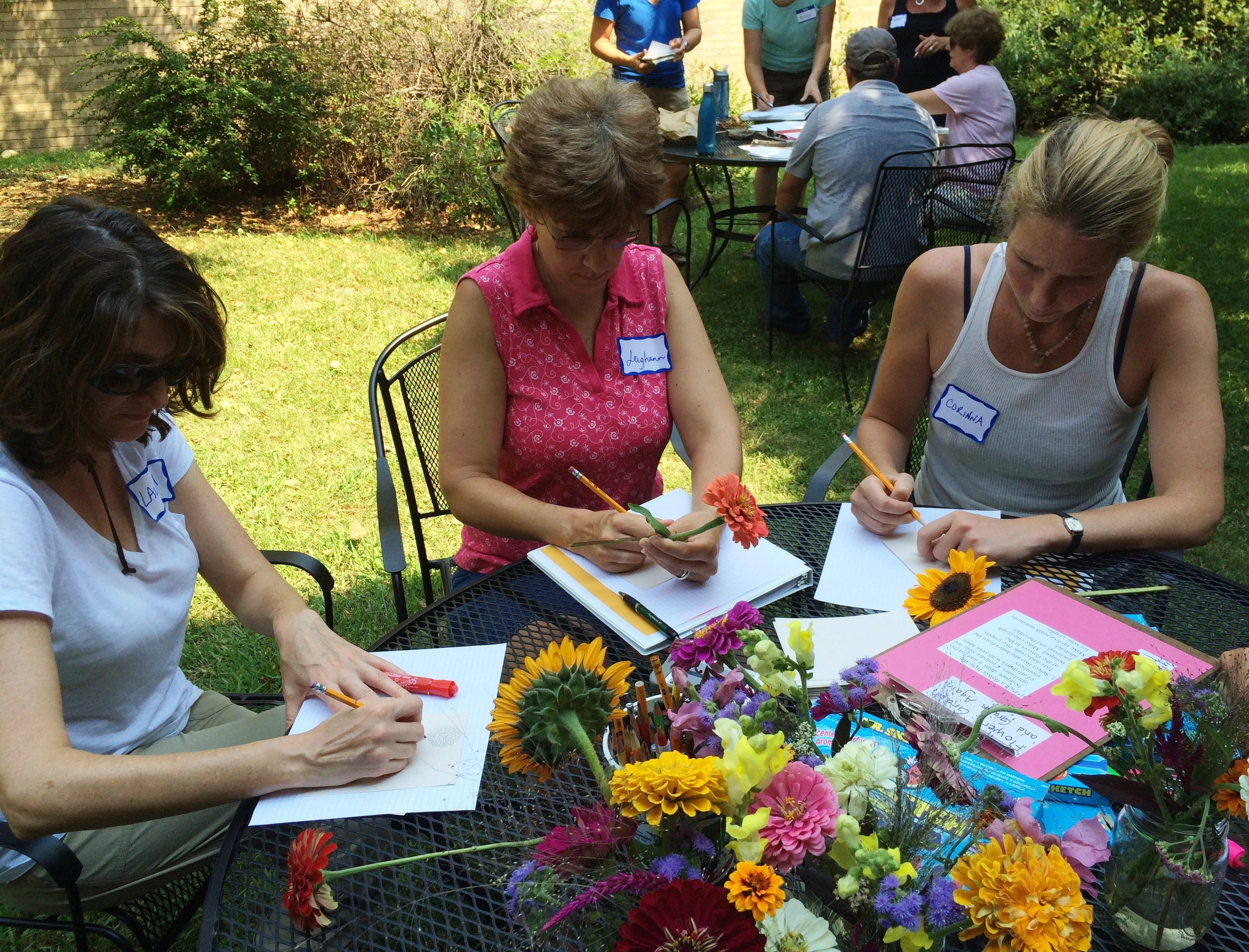 Local teachers practice and refine a math lesson about flower attributes.