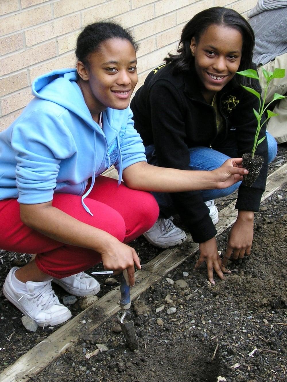 teens_planting_2(1).JPG