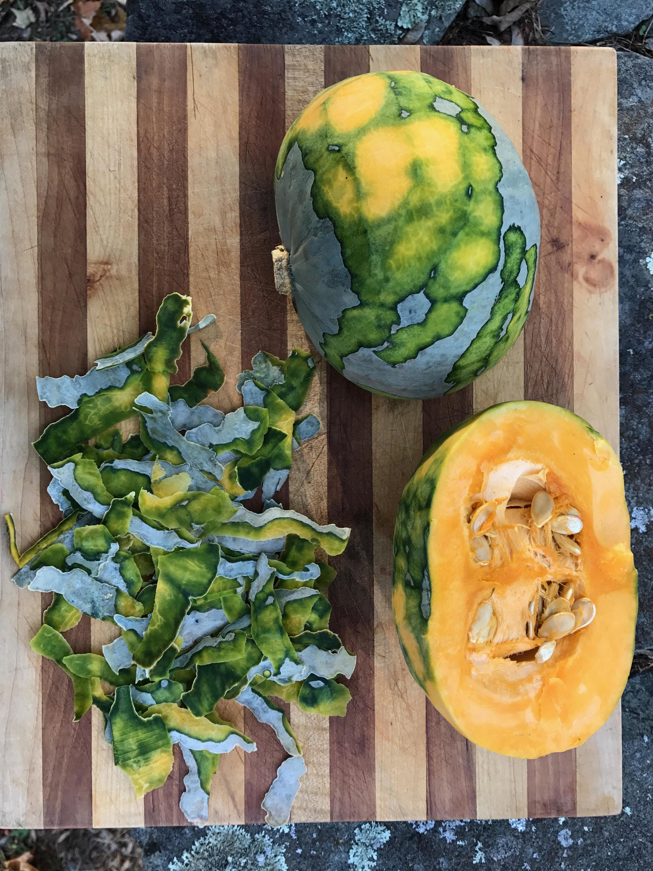 Harvest unnamed-5.jpg