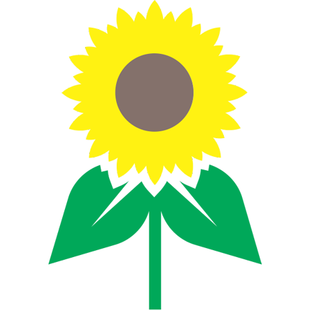 sunflower color.png